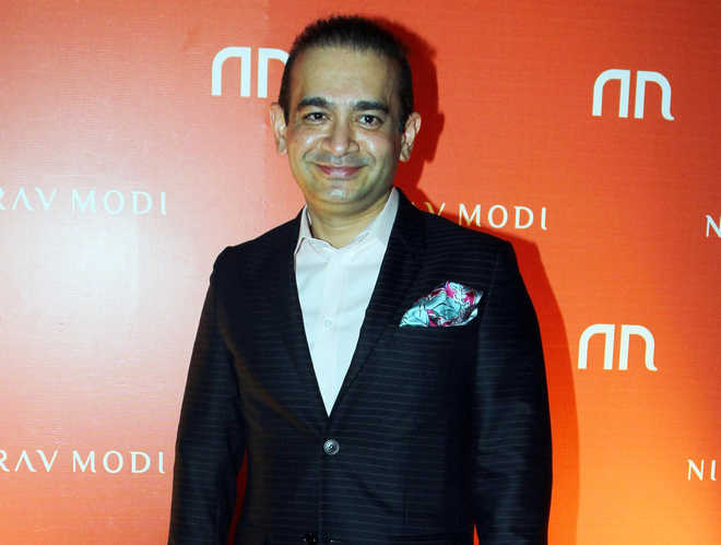 Employees of Nirav Modi and Mehul Choksi left in the lurch